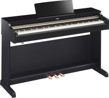 Piano Digital Arius (Incluye Adaptador Pa300C) Negro Brillante